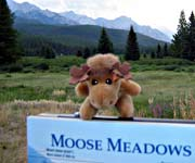 Boab Moose's Birth Place