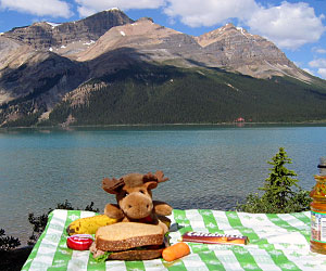 Bow Lake Picnic Lunch